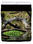 Painted Turtles Duvet Cover