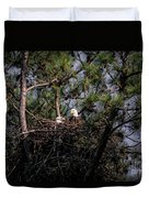 Pair Of Bald Eagles In Nest Duvet Cover