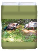 Pair Of Mallard Duck 8 Duvet Cover
