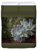 Pale Succulent On Artistic Background, Macro Duvet Cover