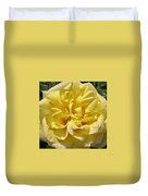 Pale Yellow Rose Duvet Cover
