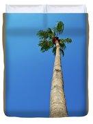 Palm Tree Against Blue Sky Duvet Cover