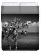 Palm Trees In Black And White At Laguna Beach Duvet Cover