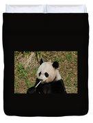 Panda Bear Eating Bamboo Shoots Up Close And Personal Duvet Cover