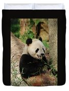 Panda Bear With Teeth Showing While He Was Eating Bamboo Duvet Cover