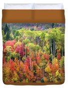 Panoply Of Autumn Color Duvet Cover