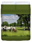 Panorama Of White Lipizzaner Mare Horses With Dark Foals Grazing Duvet Cover