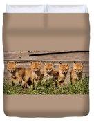 Panoramic Fox Kits Duvet Cover
