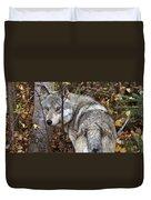 Panoramic Gray Wolf Yukon Duvet Cover