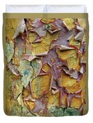 Paperbark Maple Tree Duvet Cover
