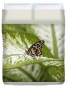 Papilio Demoleus Duvet Cover