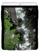 Paradise To Lovers Of Big Trees - Olympic National Park Wa Duvet Cover by Christine Till