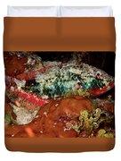 Parrot Fish On Night Dive Duvet Cover