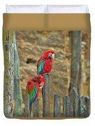 Parrots, Doue-la-fontaine Zoo, Loire, France Duvet Cover