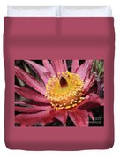 Pasque Flower Macro Duvet Cover