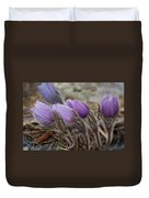 Pasque Flower Watercolor Duvet Cover