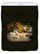 Passing Buck In Autumn Field Duvet Cover