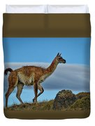 Patagonian Guanaco - Chile Duvet Cover