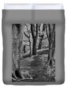 Path In Crownest Woods Duvet Cover