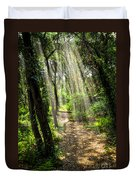 Path In Sunlit Forest Duvet Cover by Elena Elisseeva