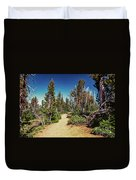 Path On Top Of Mt. Howard, Wallowa Or Duvet Cover