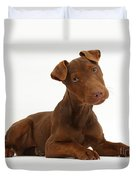 Patterdale Terrier Puppy Duvet Cover