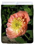 Peach Colored Poppy Duvet Cover