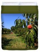 Peach Grove Duvet Cover