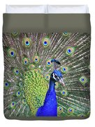 Peacock Colors Duvet Cover