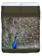 Indian Peacock II Duvet Cover