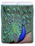 Peacock In A Oak Glen Autumn 2 Duvet Cover