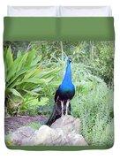 Peacock Landscape Louisiana  Duvet Cover