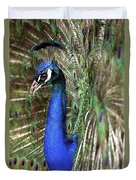 Peacock Mating Season Duvet Cover