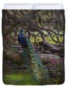 Peacock On The Plantation Duvet Cover