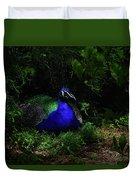 Peacock Peafowl Duvet Cover