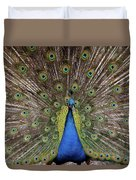Peacock Plumage Duvet Cover