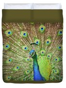 Peacock Showing Off Duvet Cover