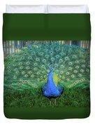 Peacock1 Duvet Cover