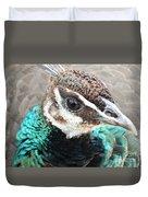 Peacocks Eye View Duvet Cover