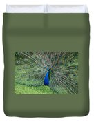 Peacocks Glory Duvet Cover