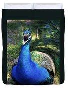 Peacocks Squawk Duvet Cover