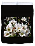 Pear Blossoms And Bee Duvet Cover