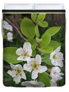 Pear Blossoms In Full Bloom Duvet Cover