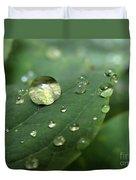 Pearls On Leaf 5 Duvet Cover