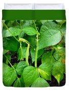 Peas Growing On The Farm 1 Duvet Cover