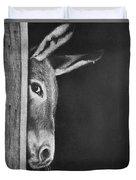 Peek-a-boo Burro Duvet Cover