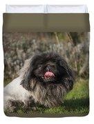 Pekingese Dog Duvet Cover