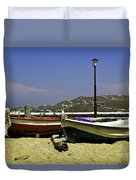 Pelican In Mykonos Duvet Cover