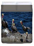 Pelicanos Duvet Cover