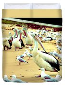 Pelicans At Pearl Beach 4.1 Duvet Cover